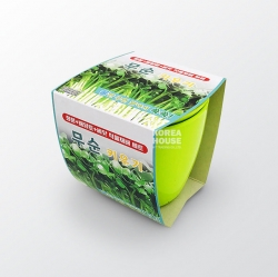 Radish Sprouts Grow Kit