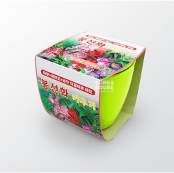 Garden Balsam Grow Kit